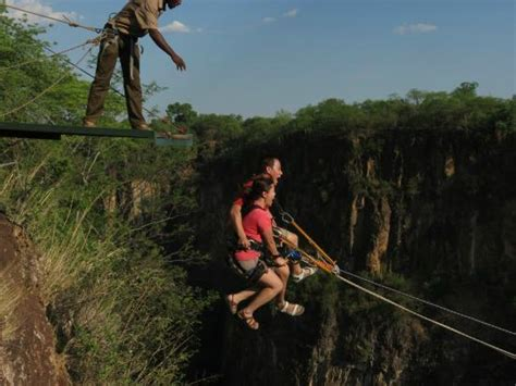 victoria falls swing getting ready to jump off the platform picture of wild