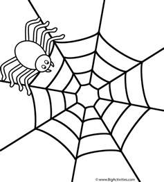 spider on web coloring page insects