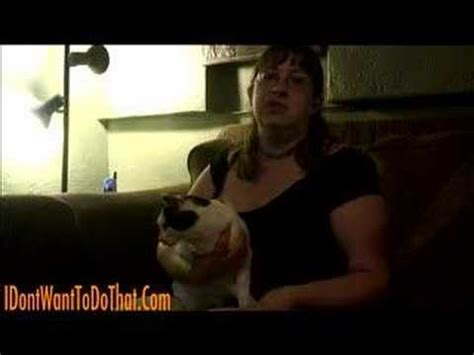 how to give a a pill how to give your cat a pill vetvid episode 020 funnydog tv