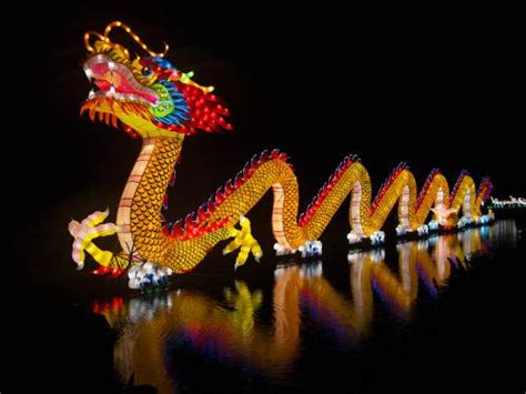 new year liverpool 2016 date new year in liverpool 2017 the year of the rooster