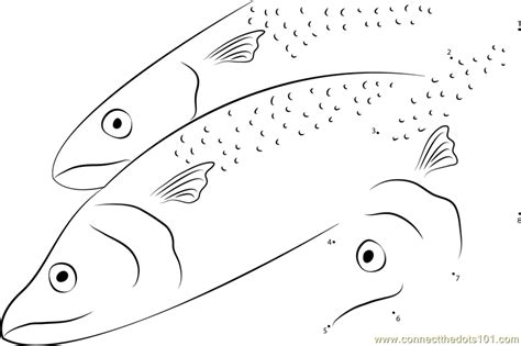king mackerel coloring pages papuan spanish mackerel dot to dot printable worksheet