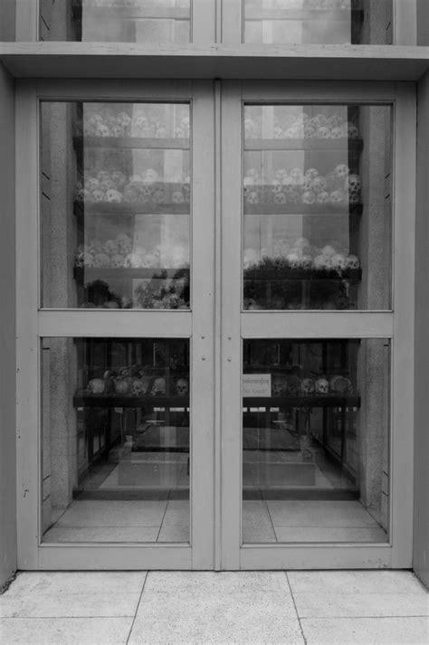 Portfolios | Corneliu Cazacu