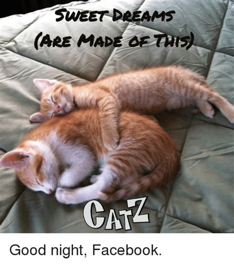 Good Night Meme - funny good night memes of 2017 on sizzle steal the