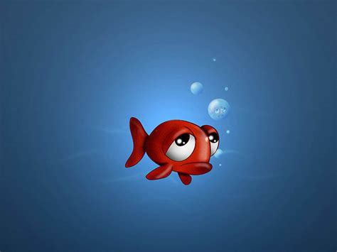 3d wallpaper water fish wallpapers 3d fish wallpapers