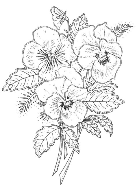 17 best ideas about november flower on pinterest 17 best ideas about flower design drawing on pinterest
