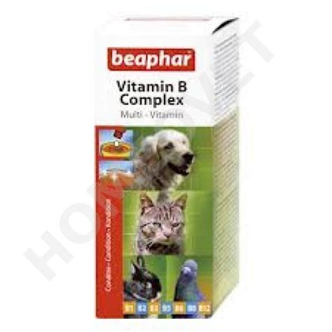 vitamin b for dogs beaphar vitamin b complex for dogs cats pigeons and rodents homeovet