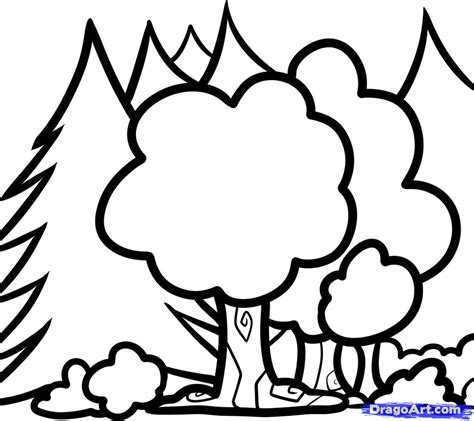 Easy Rainforest Coloring Pages by Easy Drawings Of Forest Coloring Pages