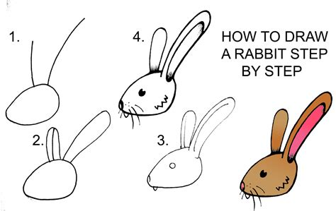 how to draw a doodle bunny pin rabbit doodle the best pics from alison brie