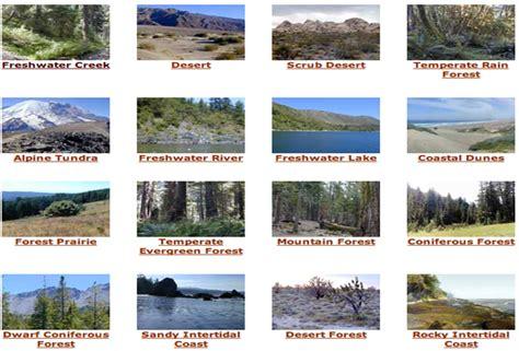 exle of ecosystem exles of ecosystems www pixshark images
