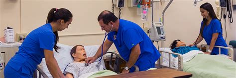 Of Florida Accelerated Mba by Accelerated Bsn Bsn Programs College Of Nursing And