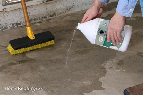 Get Pet Urine off Concrete   Remove Dog or Cat Pee Odor
