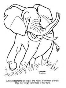 coloring pages of wild animals kids coloring