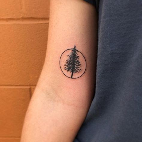 tree tattoo 30 simple and easy pine tree tattoo designs