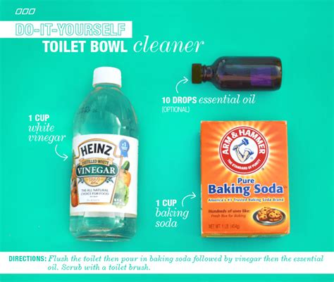 Nature Clean Toilet Bowl Cleaner 6 all household dyi cleaners