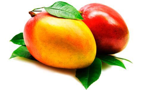 imagenes png frutas 174 gifs y fondos paz enla tormenta 174 im 193 genes de la fruta