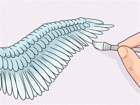 Drawing Wings by How To Draw Wings 12 Steps With Pictures Wikihow