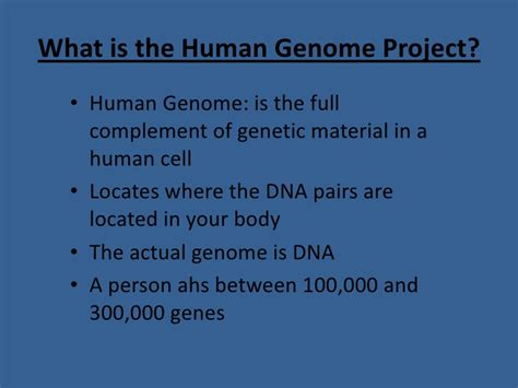 section 13 2 the human genome project the human genome project
