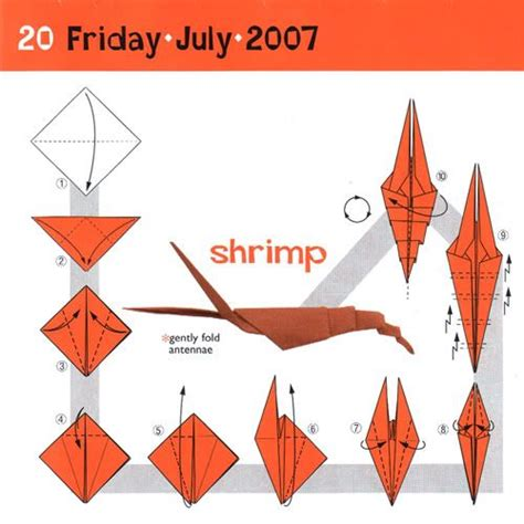 Shrimp Origami - 14 best ideas about origami on clams origami