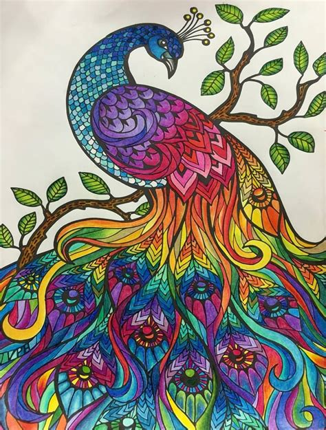 Coloring Pages For Adults Already Colored | 17 best images about coloring inspiration johanna basford
