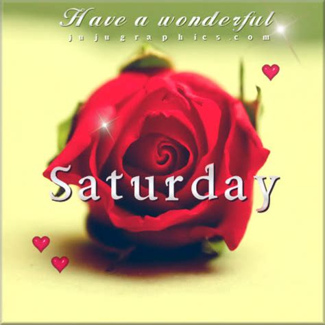 wonderful saturday red rose graphics quotes comments images   myspace