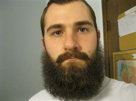 current mustache styles 8 month beard growth related keywords 8 month beard