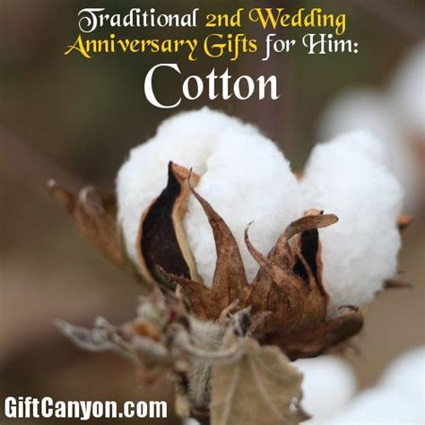 Wedding Anniversary Gifts Cotton by Traditional 2nd Wedding Anniversary Gifts For Him Cotton