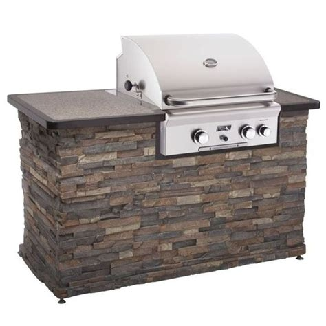 Backyard Brand Grills American Outdoor Grill Brand 24 Built In Stainless Steel Gas Grill The Great Outdoors