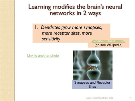 neural networks and learning learning explained to your ã a visual introduction for beginners who want to make their own learning neural network machine learning books ppt your brain term memory how to enhance your