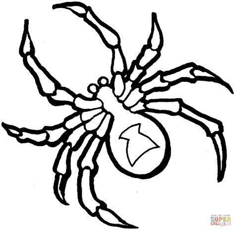 coloring page spider spider coloring pages to download and print for free