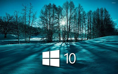wallpaper for laptop windows 10 windows 10 on snowy trees simple white logo wallpaper