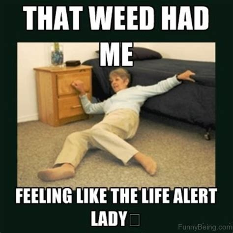 Pot Meme - 81 classic weed memes for you