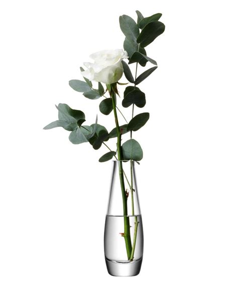 Single Stem Vases by Single Stem Vase By Lsa