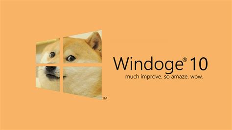 Doge Meme Wallpaper - doge microsoft windows windows 10 dog memes