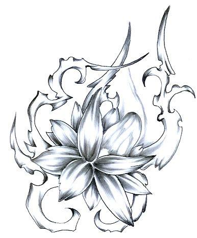 Tattoovorlagen Blumen Und Sterne 5100 by Tribal Sterne Motive Bilder Vorlagen Deto Forum