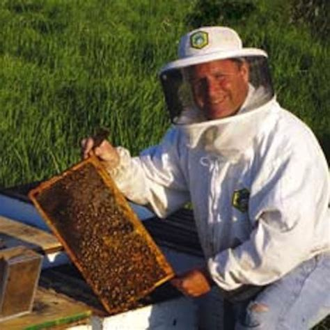beekeeping in your backyard homesteading and