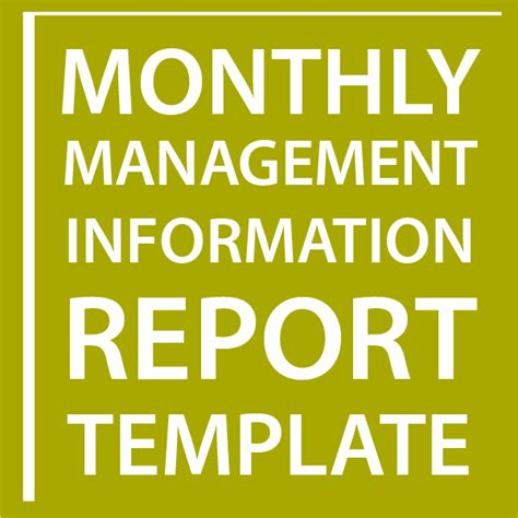management information report template monthly management information report template sell your