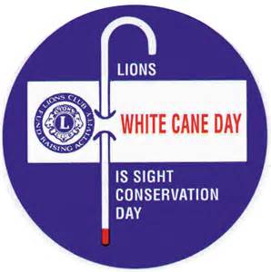 Blindness In Diabetic Dogs White Cane Day Enterprise Lions Club