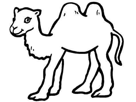 Free Printable Camel Coloring Pages For Kids Camels Coloring Pages