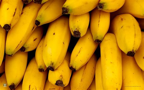 bananas hd wallpaper banana high definition wallpapers free download