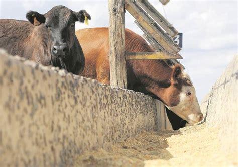 tabla de precios del ganado en uruguay tabla de precios del ganado en uruguay