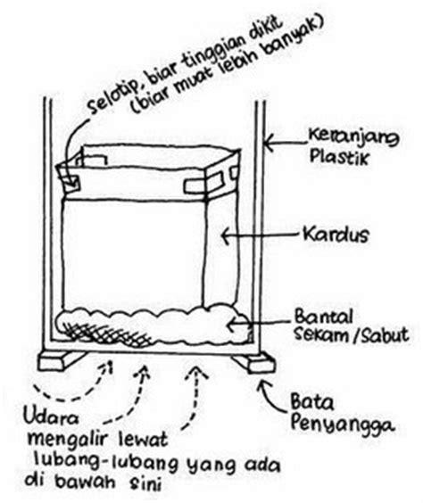 Termometer Kompos sabit cara pembuatan kompos untuk tanaman