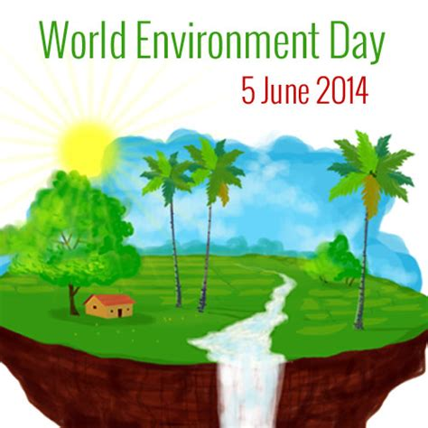 environment day world environment day our environment our future