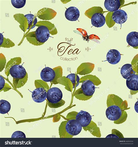 berry design vector blueberry tea seamless pattern background stock vector 468943556