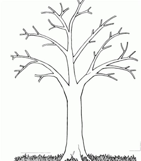 Leafless Tree Branch Outline by Printable Trees Without Leaves Leafless Tree Outline Printable Free Clip Free
