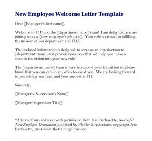 company write up template employees write up template 10 free word pdf documents
