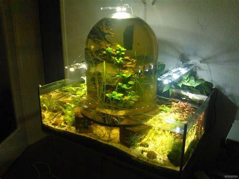 Aquarium Unterschrank Selber Bauen