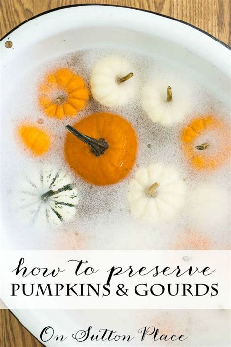how to preserve pumpkins for fall entry decor sometimes simple is best on sutton place