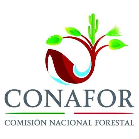 lista de beneficiarios conafor 2016 crea conafor fondo para contigencias ambientales