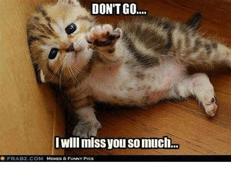 I Will Miss You Meme - i miss you animal memes www pixshark com images