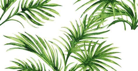 Hardcase Custom Hp Flower Themes palm leaves wallpaper wallpapersafari